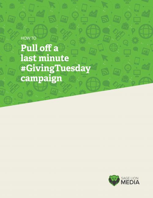 #GivingTuesday Campaign, Sage Lion Media