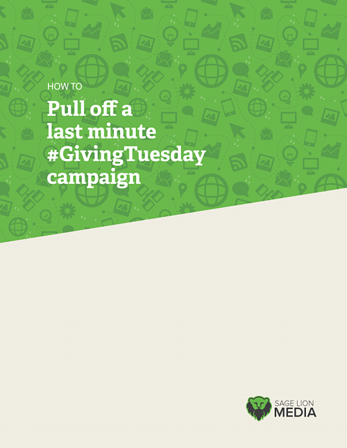 #GivingTuesday Campaign, Sage Lion Media